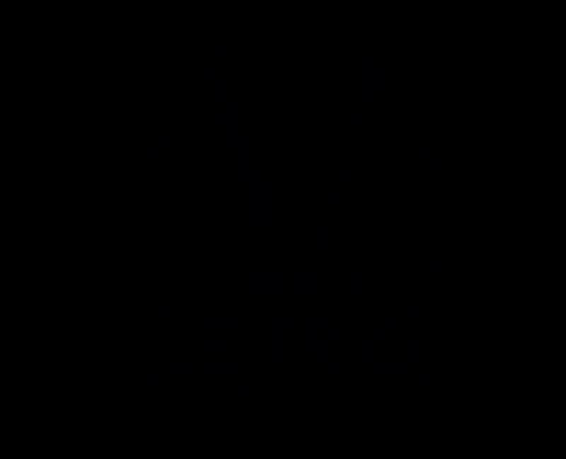 Le-trio-noir